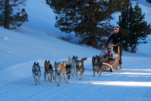 7-Andorre-mushing